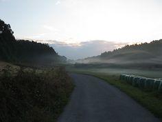 Una foto mañanera