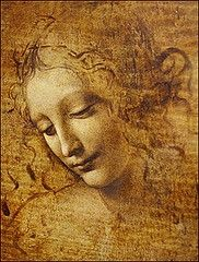 Young Woman  By Leonardo Da Vinci