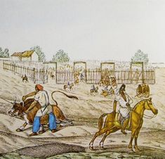 African Cowboys on the Argentine Pampas: Their Disappearance from the Historical Record - See more at: http://www.blackpast.org/perspectives/african-cowboys-argentine-pampas-their-disappearance-historical-record#sthash.obPk6w7d.dpuf