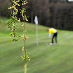 """Hat sich auch deine Spielgeschwindigkeit durch Ready-Golf verbessert? ⛳️ Seit 1. Januar 2019 gelten für uns alle neue Golfregeln. 🏌️ Ready Golf ist nun fixer Bestandteil der offiziellen Golfregeln und es bedeutet """"spielen statt warten""""! 🏌️♀️ Foto: Jutta Kleinberger #Golfplatz #kgc #Dellach #Wörthersee #golf #sport #golfing #golfcourse #golflife #golfer #kgcdellach #golfclubs Golf Sport, Golfer, Instagram, Waiting, January, Playing Games"""