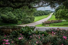 Here Are 13 Unique Day Trips In Louisiana That Are An Absolute Must-Do 7. Rip Van Winkle Gardens (Iberia)