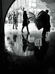 rui palha photography