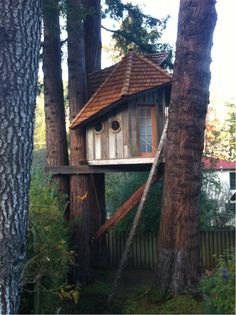 jaynelsonart:  The Mill Valley Treehouse