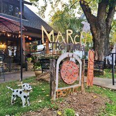 Dog-Friendly Getaway: Brevard, NC + Dog Woods Retreat | Blog | Nashville Paw