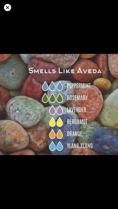 Smells Like Aveda with multiple oils — Essential Oil Diffuser Blend - with multiple oils Essential Oil Diffuser Blends, Doterra Essential Oils, Natural Essential Oils, Doterra Diffuser, Thieves Essential Oil, Bergamot Essential Oil, Young Living Oils, Young Living Essential Oils, Do It Yourself Food