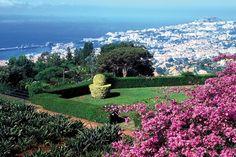 Circuit Escapade à Madère 3* Funchal Madere prix promo Promovacances à partir de 789,00 Euros TTC