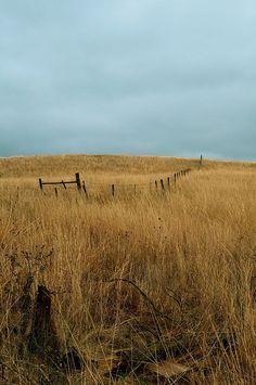 Home.  The Oklahoma Prairie.