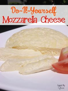 Make your own mozzarella cheese with this super easy mozzarella cheese recipe! You can go from milk to cheese in less than 45 minutes!