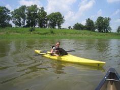 Rocky, the kayaking dog.