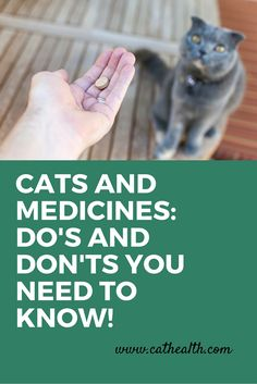 It is important not to use human or doggie drugs for cats without consulting your veterinarian. Some dog flea products are deadly in cats, and many of the common over-the-counter human painkillers (e.g., inbuprofen) are also toxic! Cats have important differences in certain liver enzyme drug processing systems that make them susceptible to toxicity so it is important not to take chances! Here are more tips for safe handling of feline medications from Dr. Christianne Schelling.