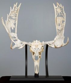 beautiful skull carving