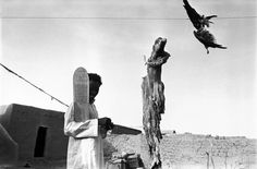 MALI. Village of Severi. A talibe (student) holds a tablet inscribed with surates from the Koran. The dead bird hanging on the line is used for witchcraft. Black Islam cohabits with animism, and carries many pagan rites into its rituals. 1988, photo by Abbas
