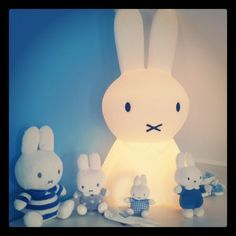 Miffy gathering