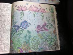 Mijn geheime tuin, potloden en gelpennen