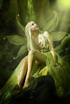 faerie warming her back and wings in sun beam