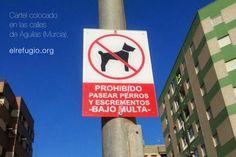 """#prohibidovivir Los que convivimos con perros estamos acostumbrados a que nos prohiban hacer casi de todo. Lo que nunca nos habían prohibido es """"PASEAR EXCREMENTOS"""". La obsesión por prohibir, lleva a veces al delirio más absurdo. (por cierto, al que hizo el cartel, """"escremento"""" se escribe con """"x"""")."""