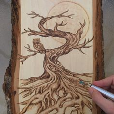 Autumn Tree and Owl Woodburning Art by LiveLoveSurfDesigns on Etsy