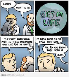 Problem based microbiology
