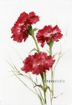 "January birthday flowers. SALE 30% OFF price. Red Carnation. Original watercolor painting. Watercolor painting. Watercolor flowers. 7"" x 10"" (56.00 USD) by TinaVuStudio"