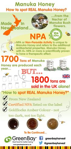 Infographic How to spot REAL Manuka Honey - Green Bay Harvest Manuka Honey Uses, Manuka Honey Benefits, Health Chart, Honey Brand, Honey Love, Wound Dressing, Us Foods, Wound Care, Healthy Tips