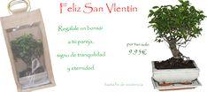 Regálale un #bonsái a tu pareja, como señas de un amor verdadero y eterno!