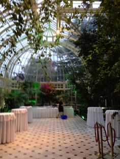 Farmleigh Hall WinterGarden at the Phoenix Park. Dublin, Ireland oct. 25th 2014 photo by Villu Veski