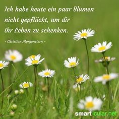 Christian Morgenstern, Hygge, Words, Quotes, Plants, Floral Quotes, Cut Flowers, Clever Sayings, Lyric Poetry