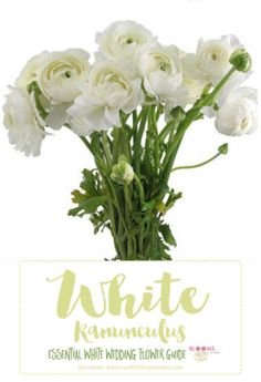 White flowers names: White Ranunculus - Tip: Ranunculus have hollow stems, use floral wire to keep them propped up. Click here for 20+ white wedding flowers and tips: http://www.confettidaydreams.com/types-of-white-wedding-flowers-names/