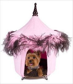 Collar Planet - Posh and Pink Dog Cat Pet Bed Furniture (http://www.collarplanetonline.com/posh-and-pink-dog-cat-pet-bed-furniture/) One of our best sellers and designer favorites. This tent is made of pink micro suede and features a sassy pink and brown feather boa as its trim. Perfect for your little Princess!