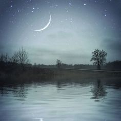 dramatic tree photo, landscape photo, autumn landscape, blue wall art, home decor, moon photo, crescent moon, tree lake photo, night sky art by HolgaJen on Etsy