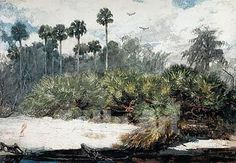 winslow homer in a florida jungle