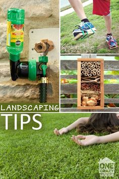 11 Tips for those of us who are too lazy to put a lot of effort in our Landscaping