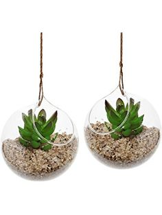 Set of 2 Decorative Clear Glass Globe / Hanging Air Plant Terrarium Planter / Candle Holder - MyGift® ❤ MyGift