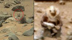 Unaestatua que representaría a un soldado extraterrestre ha sido encontrada sobre la superficie de Marte. Una criaturabípeda que incluso parece tener alg