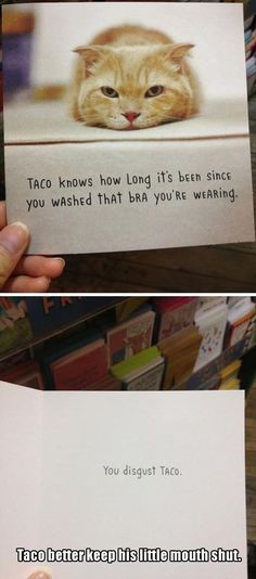Funny Pictures of The Day 27 photos Morably