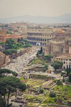 Colosseum and Palatine hill.....