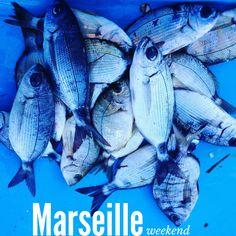 Scopri foto e consigli di una città tutta da scoprire ed in pieno cambiamento. Marsiglia insolita ed intrigante. Itinerario per un weekend straordinario.