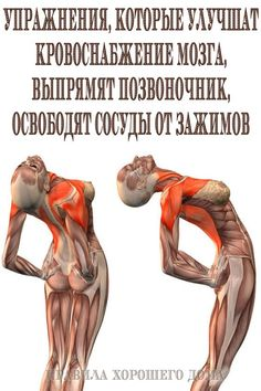 Many people are concerned about getting fit, yet they are unable to find time to create viable fitness routine. Thyroid Problems, Health Problems, Natural Home Remedies, Herbal Remedies, Health Remedies, Cold Remedies, Different Types Of Arthritis, Sedentary Lifestyle, Leg Pain