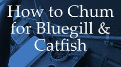How to Chum for Bluegill and Catfish Fishing Tips, Fishing Lures, Fishing Stuff, Homemade Catfish Bait, How To Catch Catfish, Catfish Fishing, Blue Cats, Read Later, Rigs