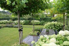 and white gardens moderne witte tuin moderne witte tuin Back Gardens, Small Gardens, Outdoor Gardens, Modern Garden Design, Contemporary Garden, Garden Deco, Balcony Garden, White Gardens, Garden Styles