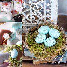 Spring Birds Nest Craft, Easter Craft Birds nest DIY craft Bvintage