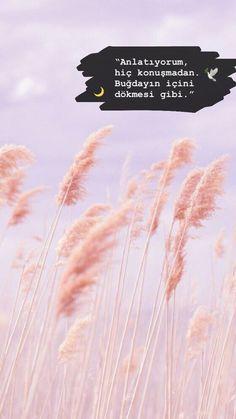 Buğdayın içini dökmesi gibi Book Quotes, Life Quotes, Literature Books, L Love You, Depression Quotes, Insta Story, Cool Words, Sentences, Karma