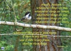 Finally brethren whatsoever things are true whatsoever things are honest whatsoever things are just whatsoever things are pure whatsoever things are lovely whatsoever things are of good report; if there be any virtue and if there be any praise think on these things. [Philippians 4:8]