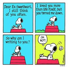 Ha! Look at Snoopy's face in the last panel!