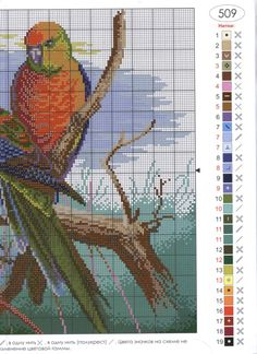 "Photo from album ""попугаи"" on Yandex. Cross Stitch Bird, Cross Stitch Animals, Counted Cross Stitch Patterns, Cross Stitch Charts, Bird Embroidery, Embroidery Patterns, Bird Patterns, Quilted Wall Hangings, Textile Art"
