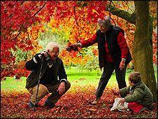 Pareja mayor y niño jugando en el parque en otoño