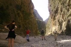 Trekking in the Area