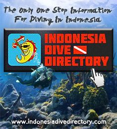 Indonesia Dive Directory - One stop information for diving in Indonesia