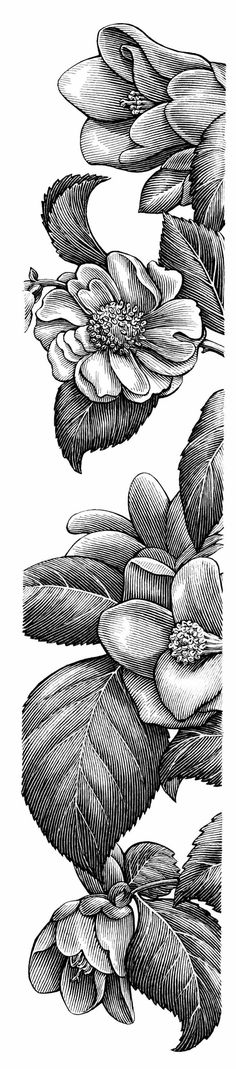 ▷ 1001 + black and white drawing photos that will help you improve your technique Lino Art, Gravure Illustration, Stippling Art, Pop Art Wallpaper, Art Watercolor, Engraving Illustration, Mural Wall Art, Black And White Drawing, Elements Of Art