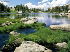 Wyoming Shoshone National Forest